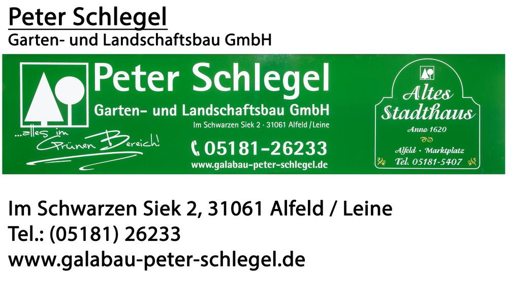 Schlegel_3